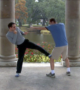 Wing Chun Side Kick